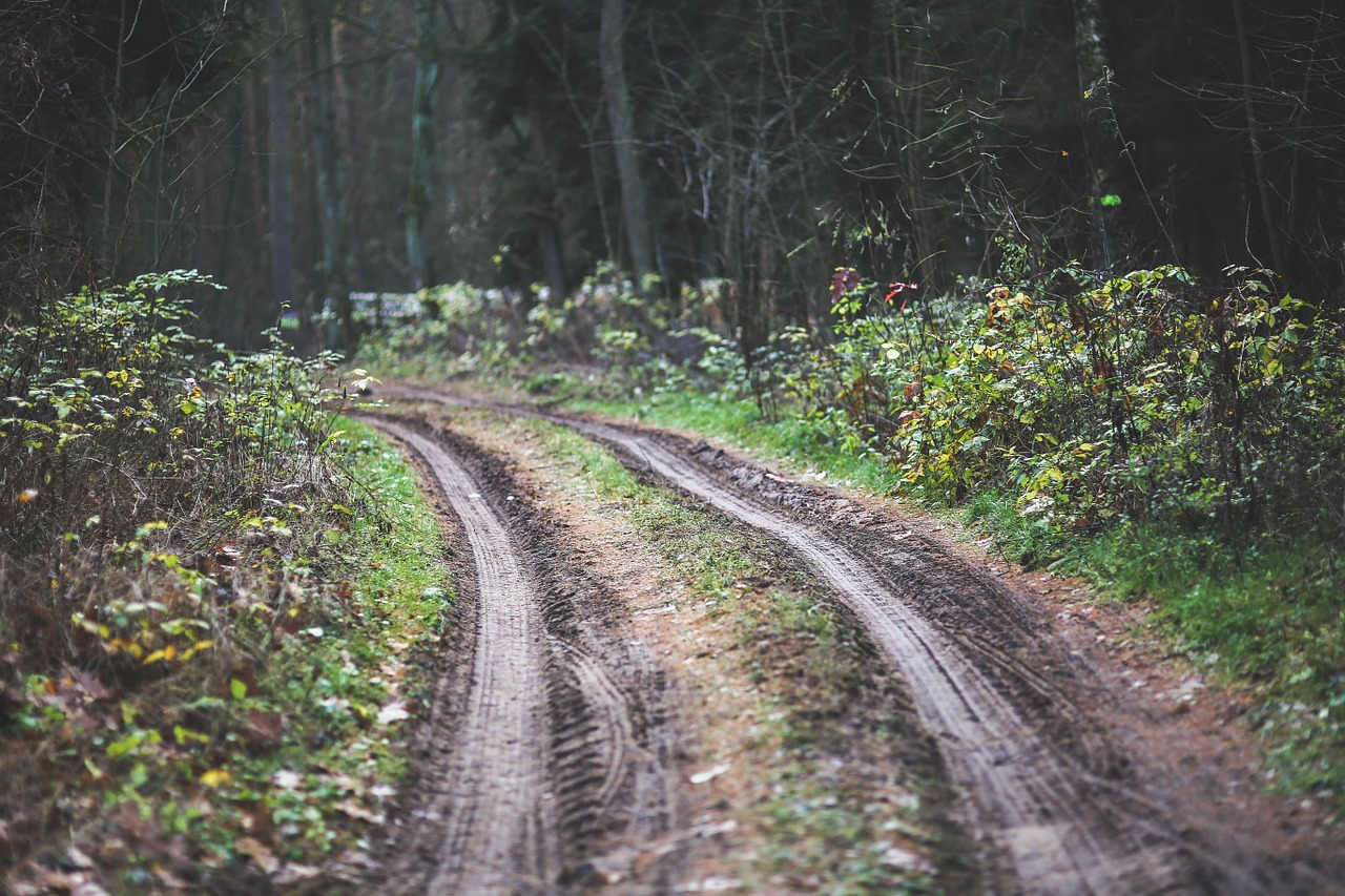 This Path May Lead To Off Road Recovery
